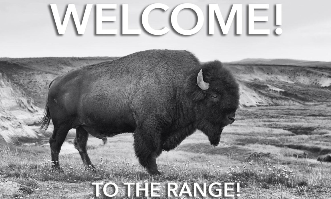 Welcome Bison